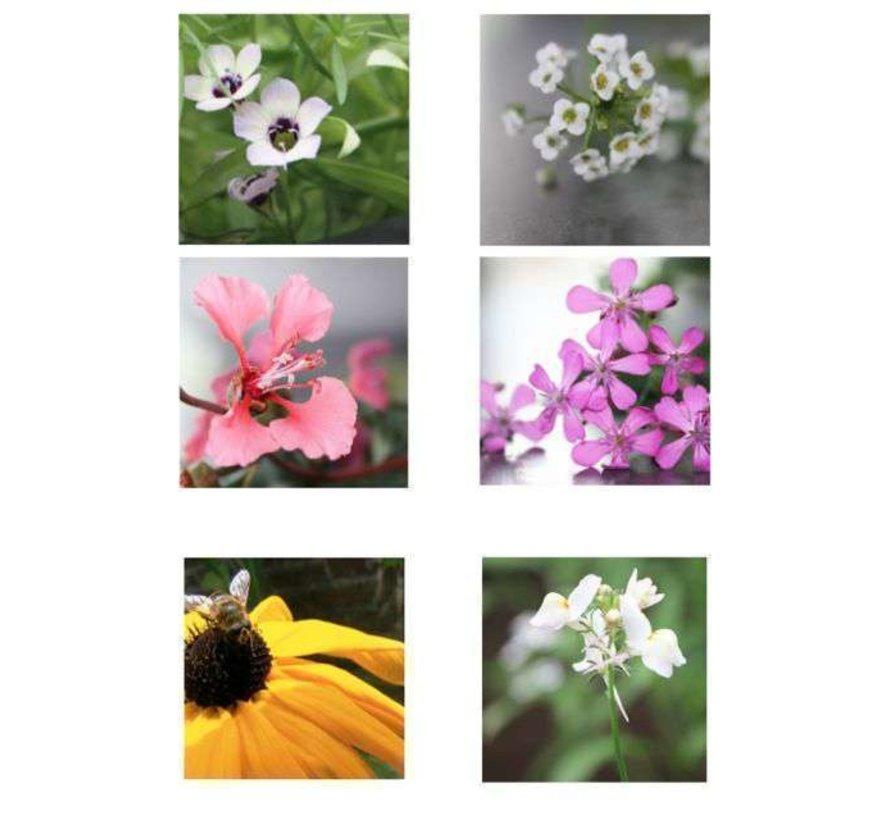 Confetti van bloemenzaadjes