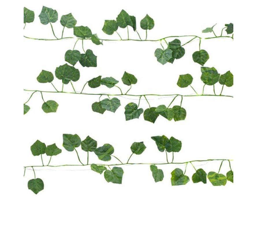 Ivy string lights