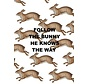 Follow the Bunny setje van vijf ansichtkaarten