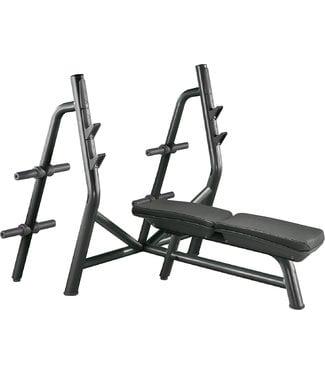 TechnoGym horizontal bench