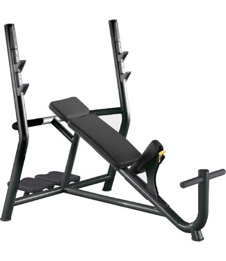 TechnoGym inclined bench
