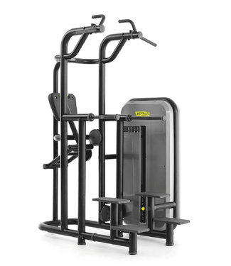 TechnoGym Element+ kneeling easy chin dip