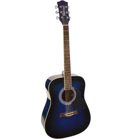 Richwood  Richwood RD-12-BUS /  Artist Series akoestische gitaar