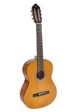 Valencia  Valencia  VC204 |  Series 200 klassieke gitaar
