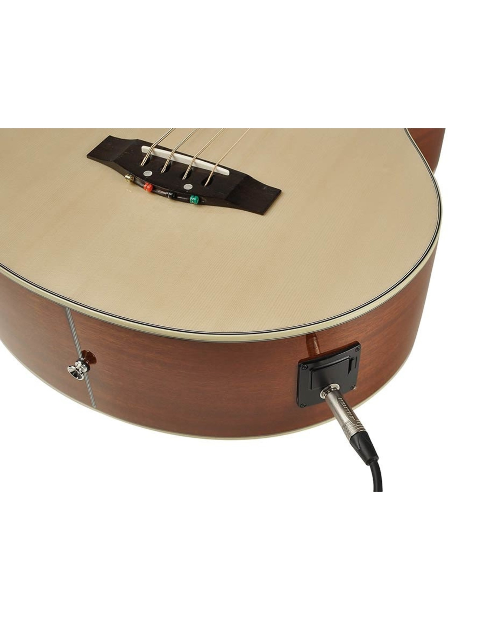 Richwood  RB-102-CE| Richwood akoestische basgitaar