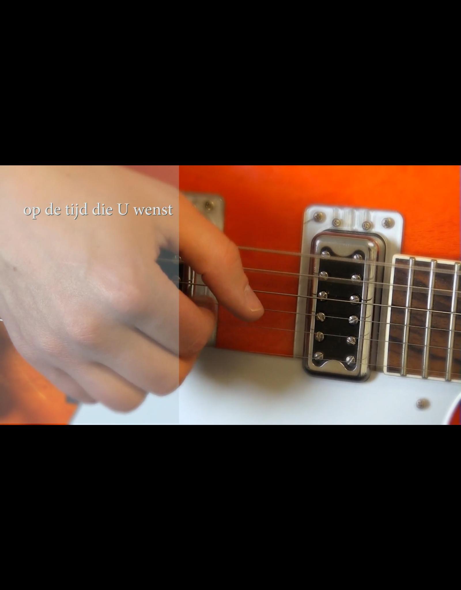 Online Muziekopleiding Gitaarlessen boven de 21 jaar door Online Muziekopleiding, muziekles via je webcam