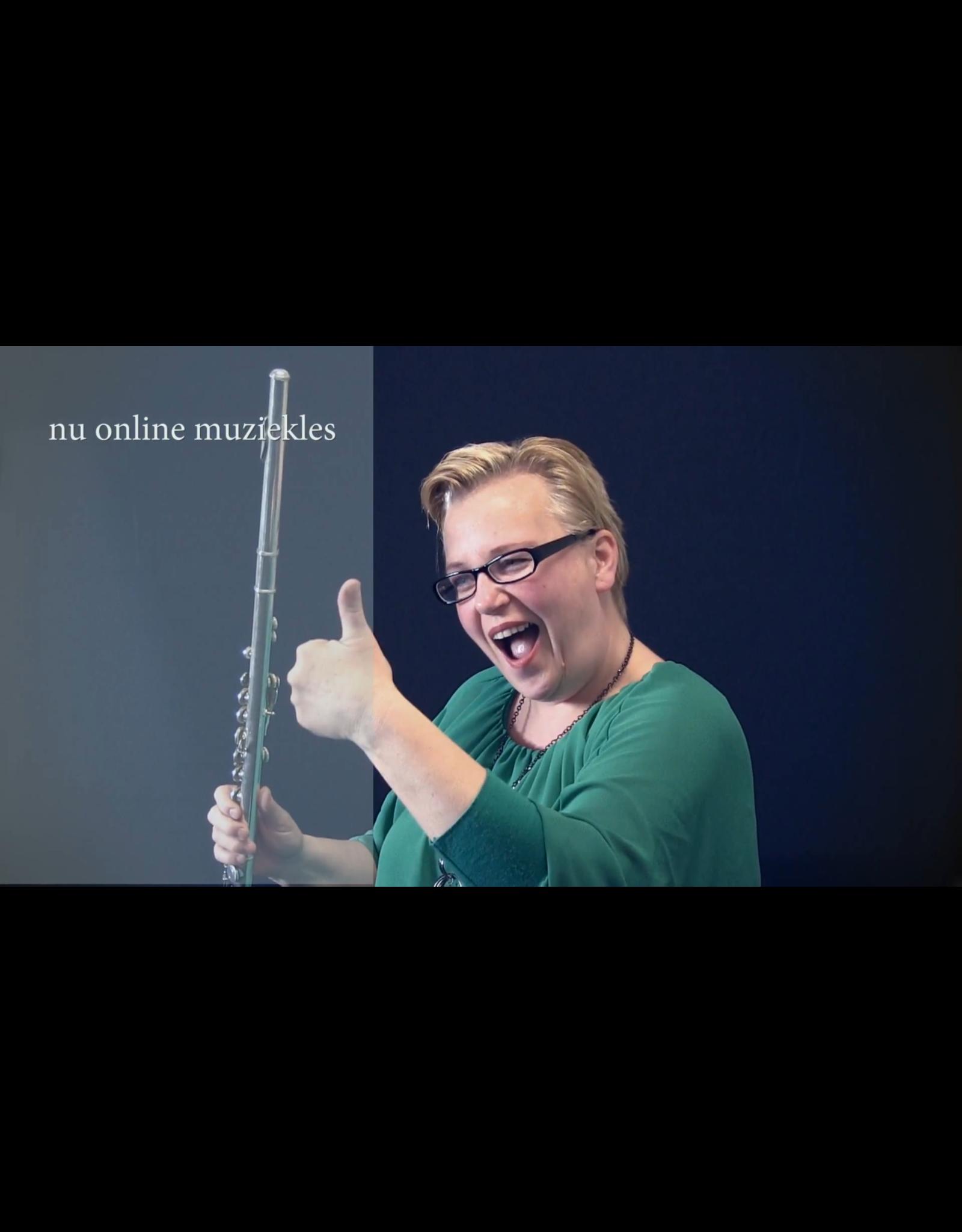 Online Muziekopleiding Dwarsfluitlessen boven de 21 jaar Online Muziekopleiding