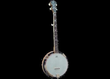Diverse Snaarinstrumenten