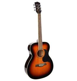 Richwood  Richwood Sunburst Akoestische gitaar