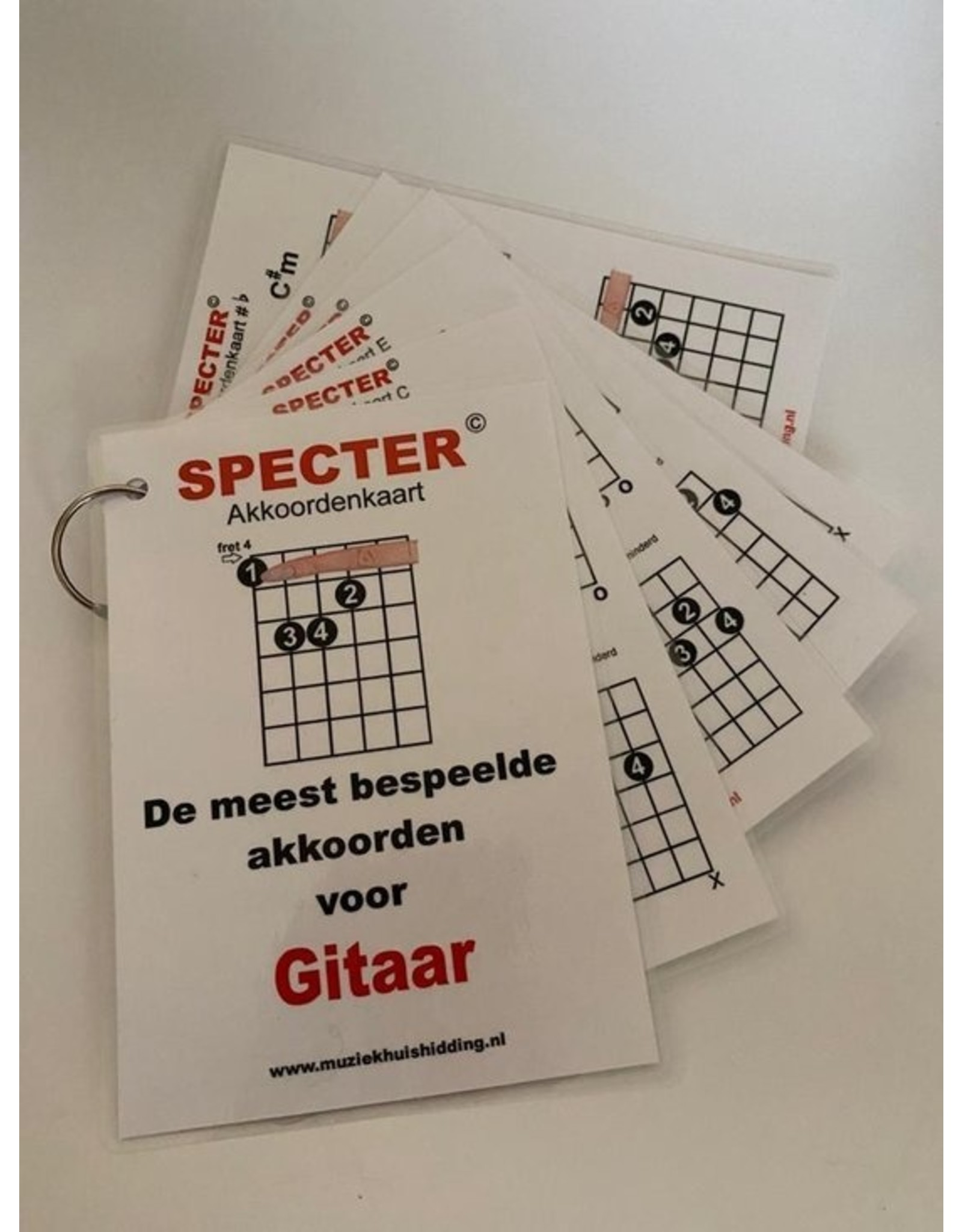 Specter Akkoorden - de meest bespeelde akkoorden voor gitaar
