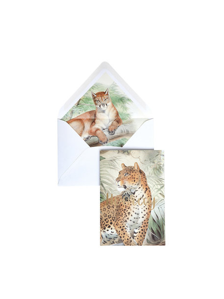 Creative Lab Amsterdam Old Cat Greeting Card