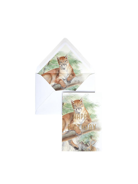 Old Cat Greeting Card - Happy Birthday