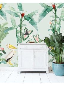 Pelican Wallpaper