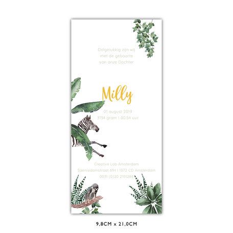 Creative Lab Amsterdam Birth Announcement Card - Baby Monkeys 98x210