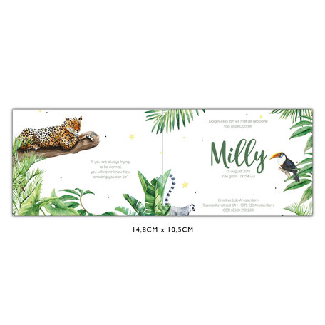 Creative Lab Amsterdam Baby Announcement Card - Jungle Tiger 148x105