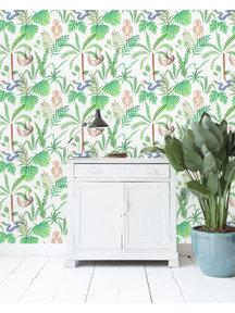 Jungle Monkeys Wallpaper