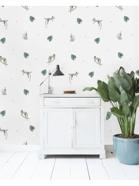 Ringtail Star Wallpaper