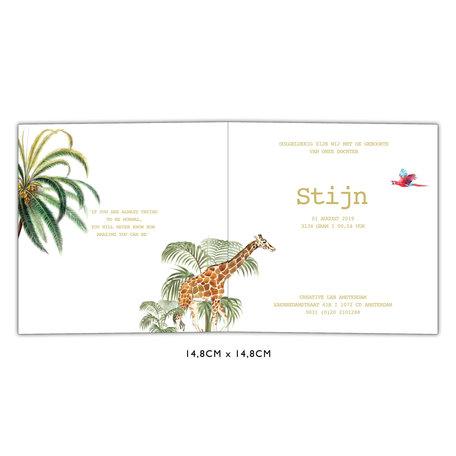 Creative Lab Amsterdam Birth  announcement Card - Binti Home 148x148