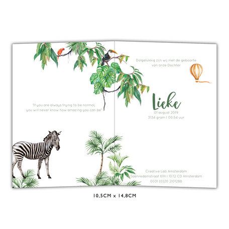 Creative Lab Amsterdam Baby Announcement Card - Monkey Jungle 105x148