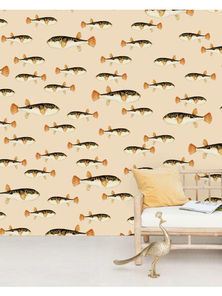 Follow My Fin Wallpaper