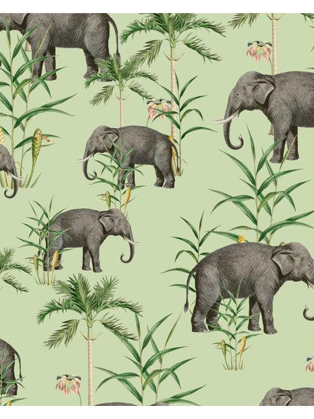 Creative Lab Amsterdam Oscar the Elephant Green Badkamer Behang