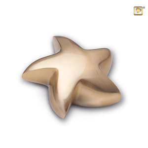 HUS 007 Brass keepsake star