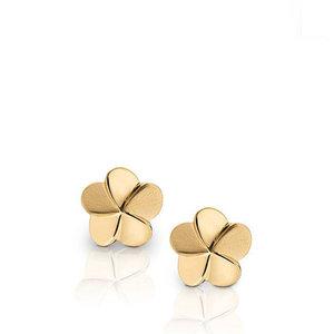EHU 275 Earrings