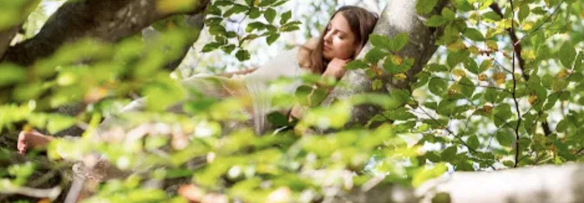 Aromatherapie - Rozemarijn.... meer dan zomaar een geurtje