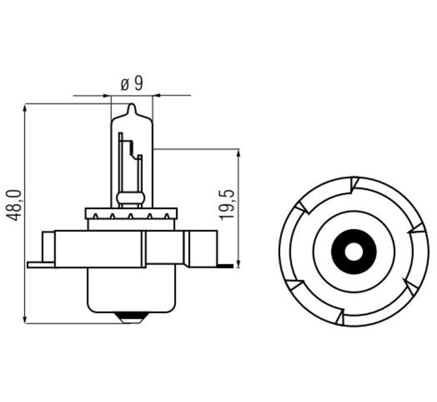 LAMP 12V-15W P26S-HALOGEEN