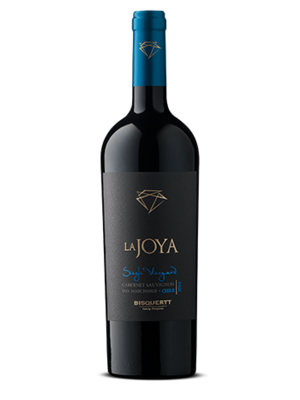 Bisquertt Bisquertt La Joya Single Vineyard Cabernet Sauvignon