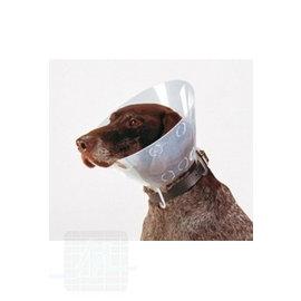 BUSTER Clic Collar Kombipack