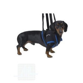 Gehhilfe Hund