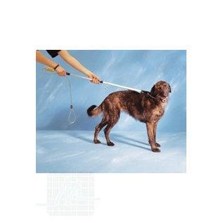 Fang Pole Hunde 150cm