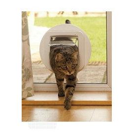 Katzentür sicher klappe