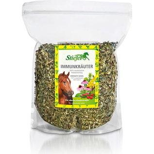 Stiefel Immunity Herbs