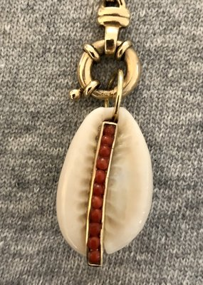 Coral Cowrie