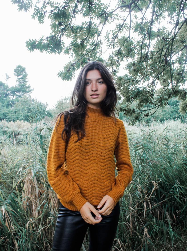Knit Pullover Buckthorn Brown