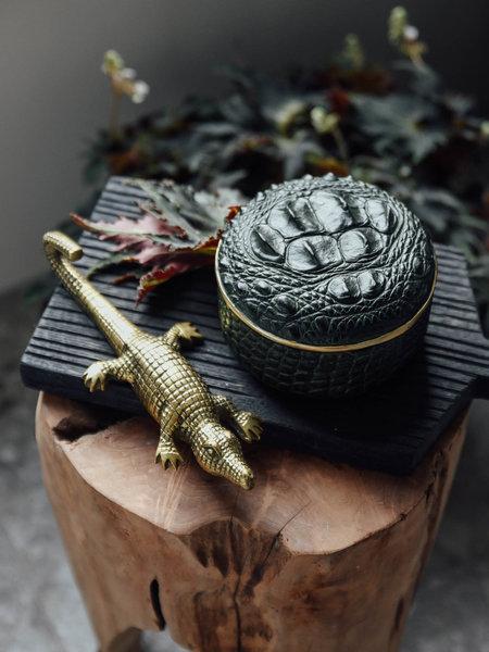 Box crocodile green gold