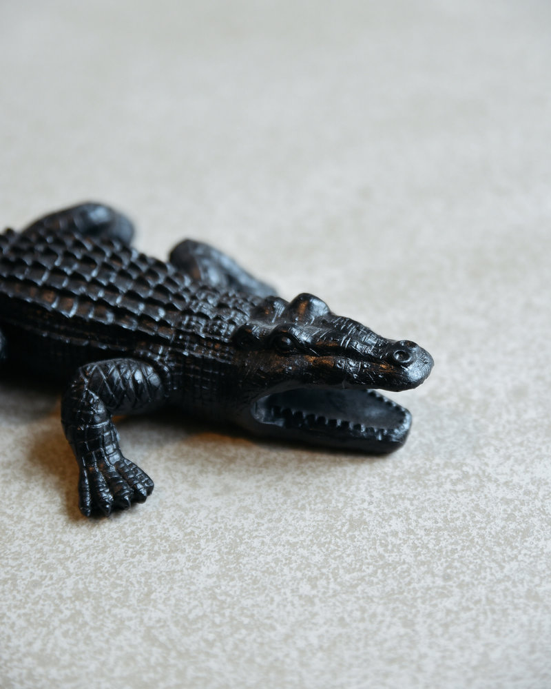 Crocodile black