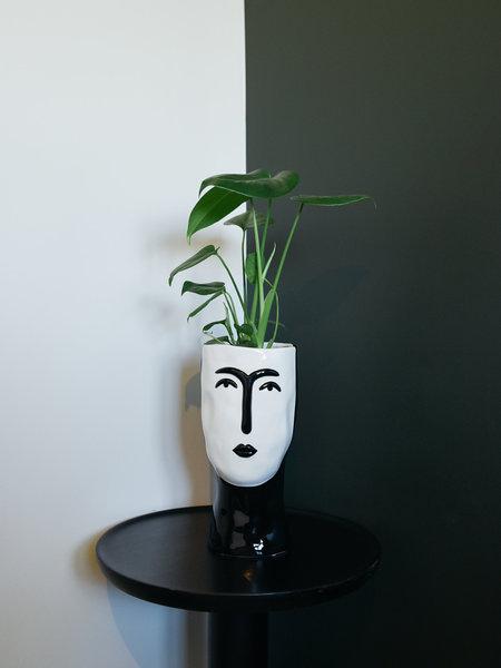 Planter Face Big