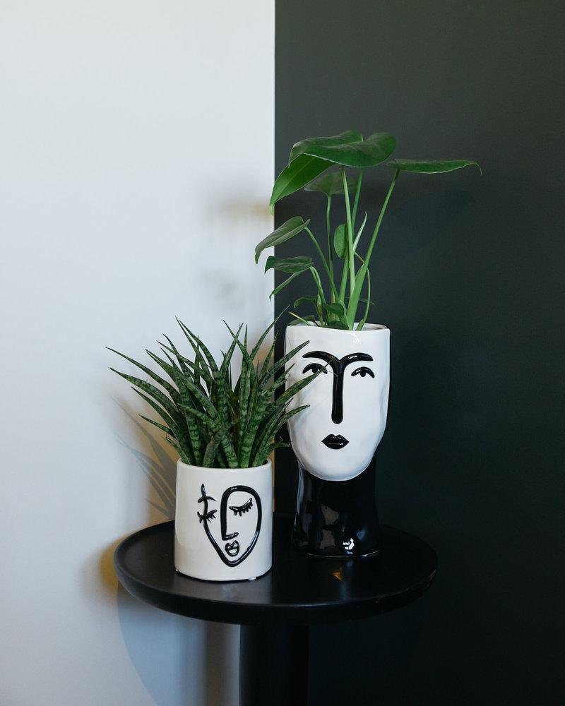 Planter Face Small