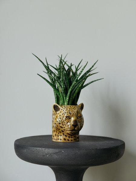Animal Plant Pot Big - Leopard