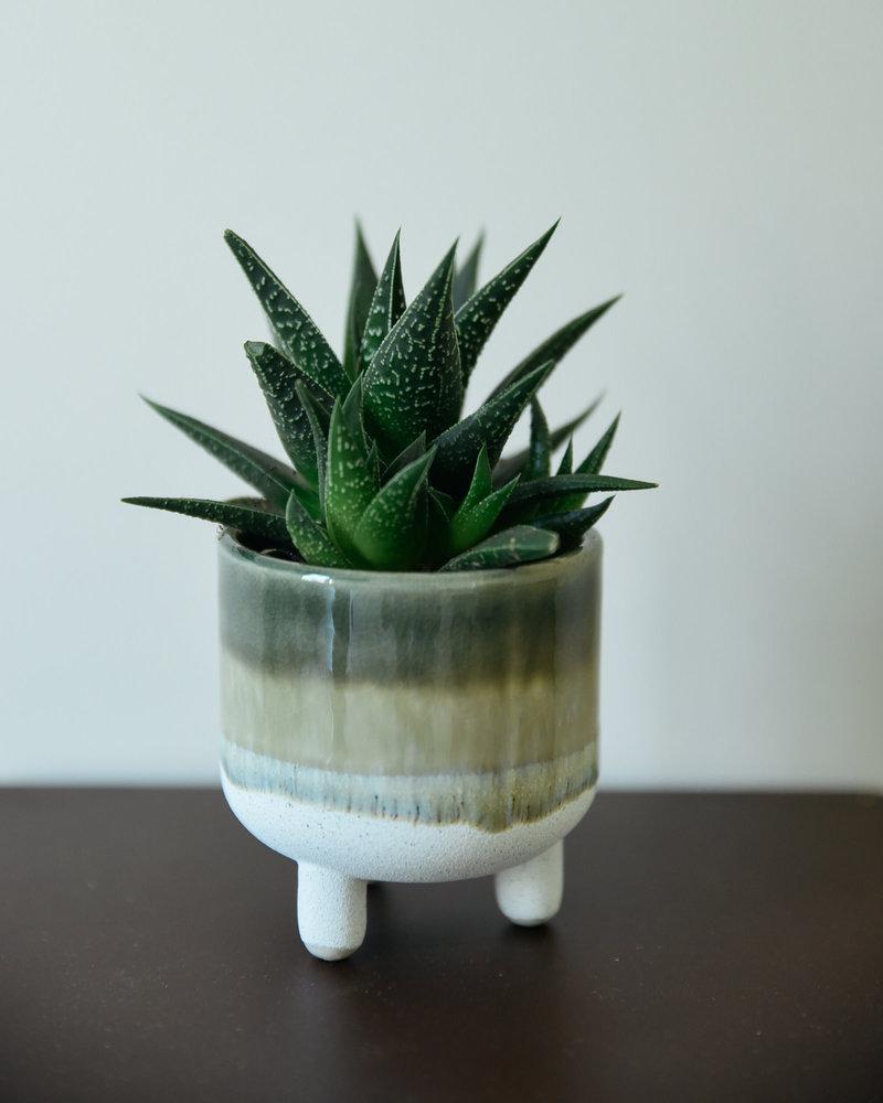 Small Planter Mojave  Green