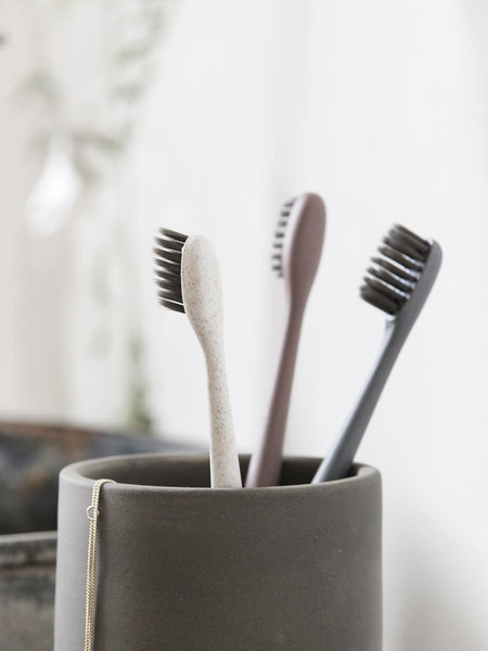 Meraki Tooth Brush Set of 3