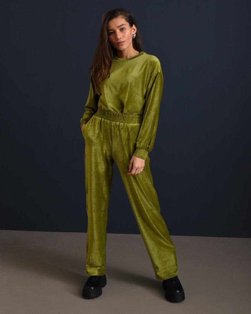 Louise Velvet Pants Green