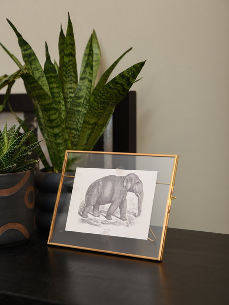 Brass Photo Frame Elephant
