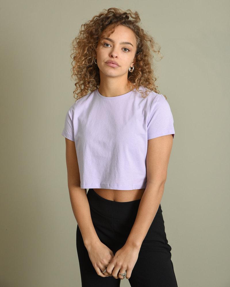 Fran Cropped T-shirt Pastel Lilac