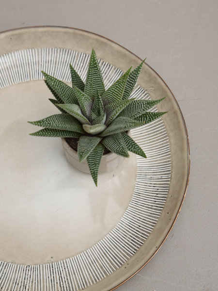 Serving Plate Enzo Sand
