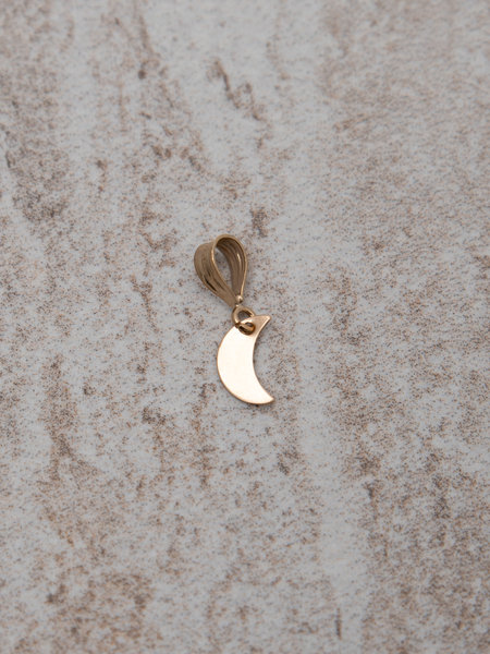 The Two Collectors Necklace Charm Moon Goldfilled