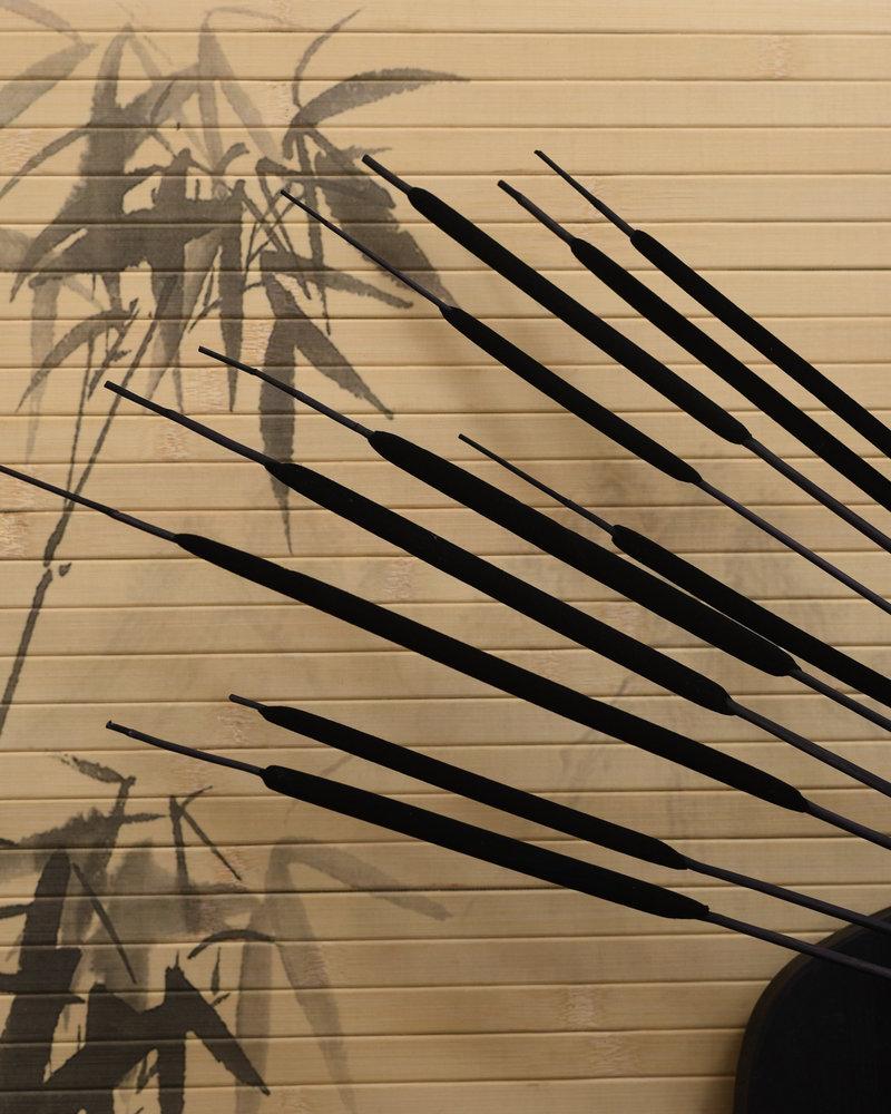 Dried Flowers Black - Typha Reed (SET OF 10)